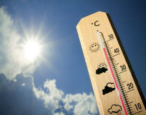 8 مشکلی که در تابستان شایعاند